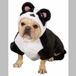 Casual Canine Panda Pup Costume - XLARGE