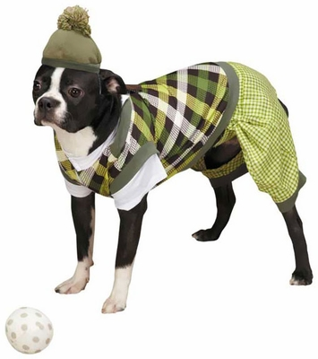 Casual Canine Putter Pup Costume - MEDIUM