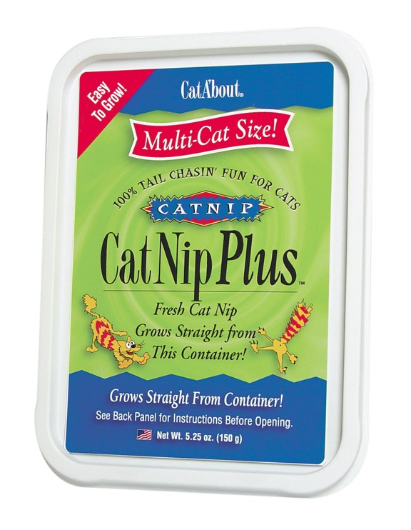 Cat A'bout Catnip Treats