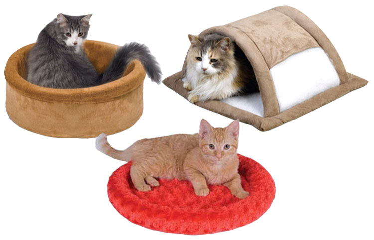 Cat Beds and Cushions