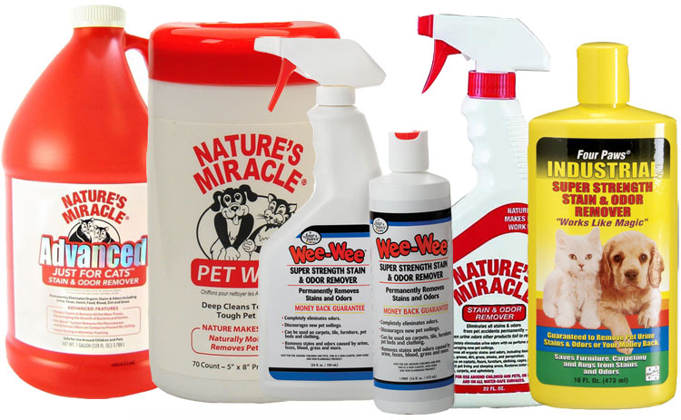 Cats Stain & Odor Removal