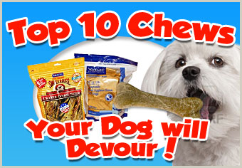 Chews Your Dog Will Devour!!