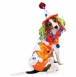 Class Clown Costume Dog Costumes