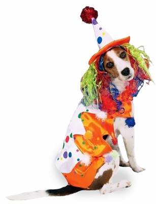 Class Clown Dog Costume - LARGE