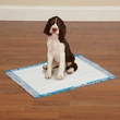 Clean Go Pet Graffiti Puppy Pads (100 Count) - Blue