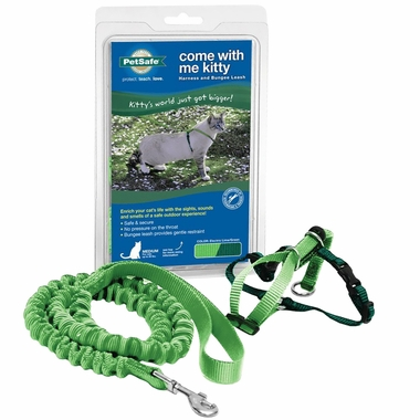 Come with Me Kitty Harness & Bungee Leash - MEDIUM / LIME
