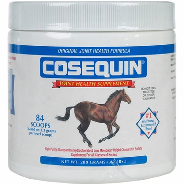Cosequin EQUINE Powder Concentrate (280 gm)