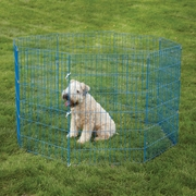 Crate Appeal Color Exercise Pen for Dogs
