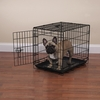 Crate Appeal Crate Medium/Large - Black