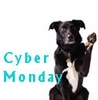 EntirelyPets Cyber Monday Deals & Sales for all your pets | Save the Date 2015