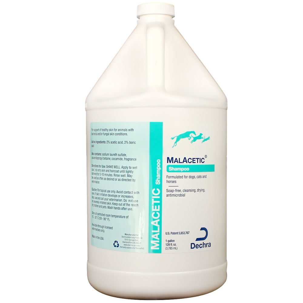Dechra MalAcetic Shampoo for Dogs and Cats (ONE GALLON)