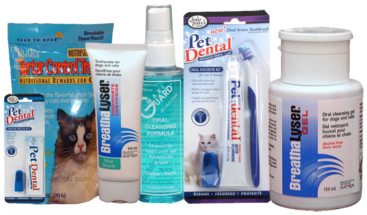 Dental Products for Cats