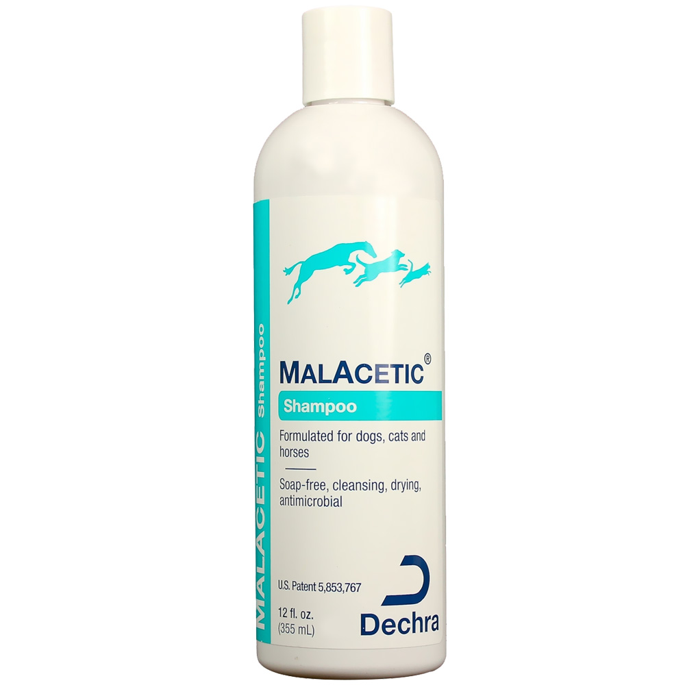 DermaPet MalAcetic Shampoo for Dogs and Cats (12 oz)