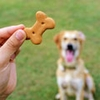 Biscuits & Baked Dog Treats