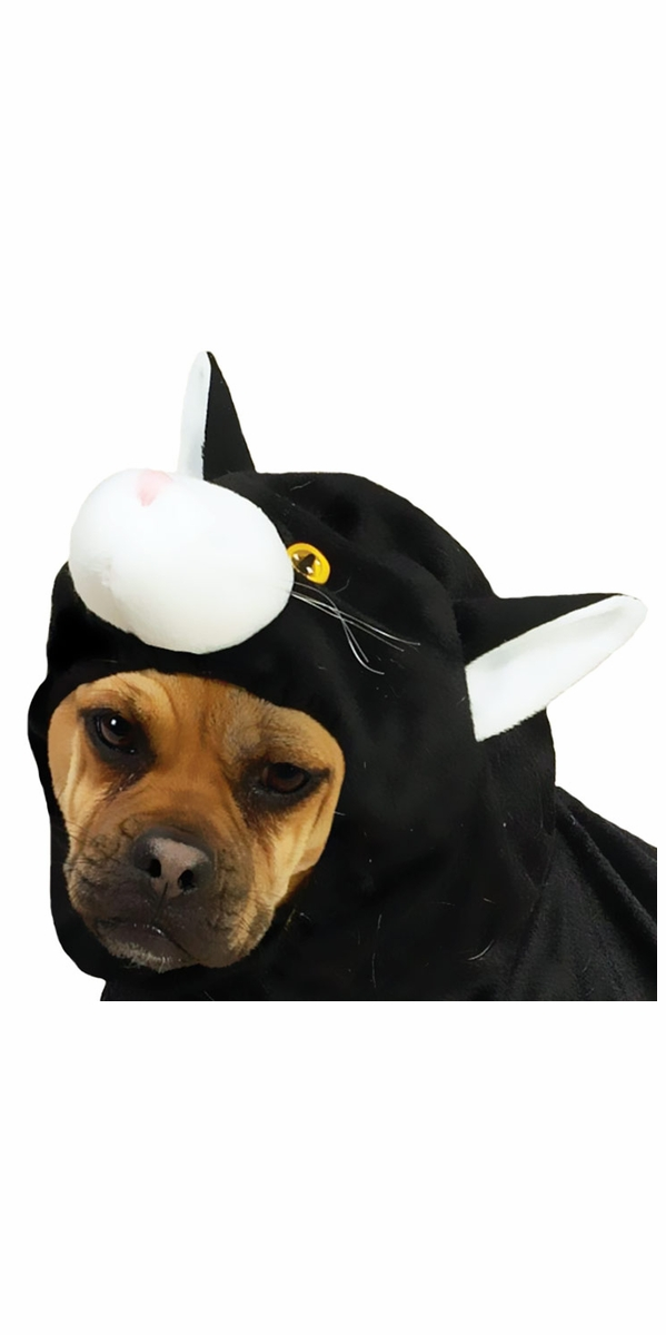 Doggone Cat Dog Costume - XLARGE