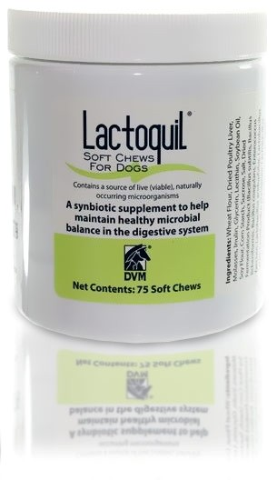 DVM Lactoquil Soft Chews for Dogs