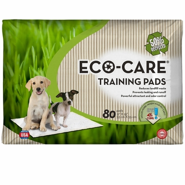 ECO-Care Training Pads - 80 Pad Pack (22