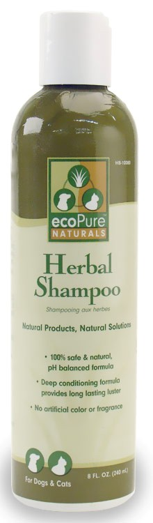 EcoPure Herbal Shampoo