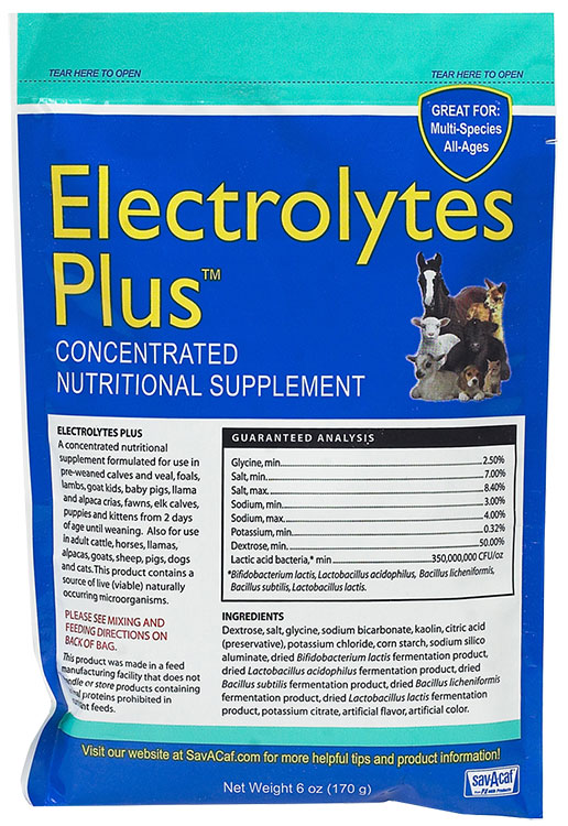 Electrolytes Plus Packet (6 oz)