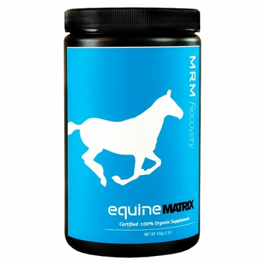 Equine Matrix - MRM Recovery (450 gm)