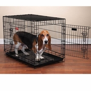 Everlasting Crate w/Dual Doors for Dogs