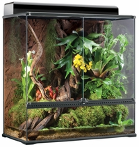 "Exo Terra High Glass Terrarium (36""x18""x36"")"