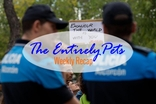 Exposure to Ebola Proves Deadly for Spanish Dog, Dozens of Missing Cats Point to Foul Play, and Horses are Saved from Brutal Deaths- This & More in the EntirelyPets Weekly Recap (October 3-10, 2014)
