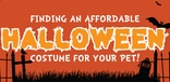 Finding an Affordable Halloween Costume for Your Pet