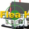 Flea Hot Spots Around Your Home