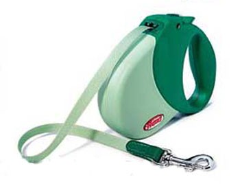 Flexi Expression Retractable Leash Green - Small/Medium