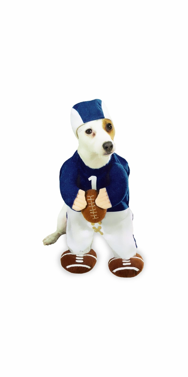 Football Fever Dog Costume