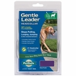 Gentle Leader Quick Release Head Collar Large - Deep Purple