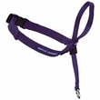 Gentle Leader Quick Release Head Collar Medium - Deep Purple