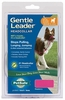 Gentle Leader Quick Release Head Collar Medium - Raspberry