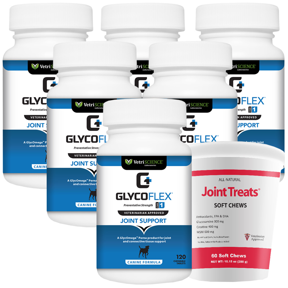 GlycoFlex 1 6-PACK (720 Tablets) + FREE Joint Treats!