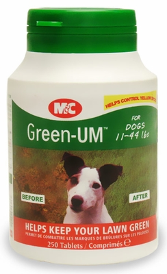 Green UM for Dogs (250 tablets)