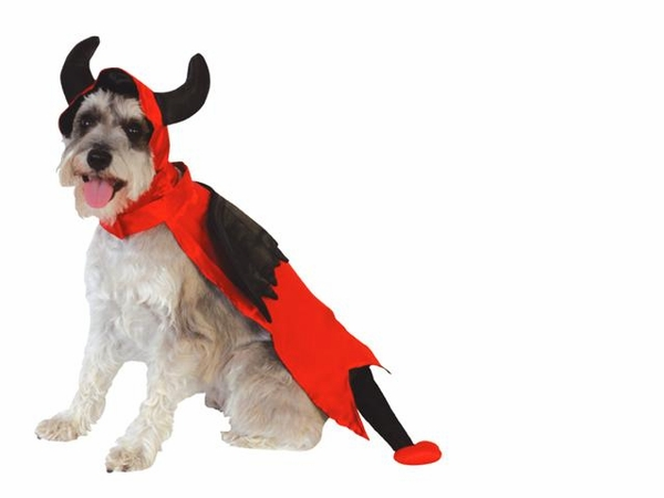 Halloween Devil Costume