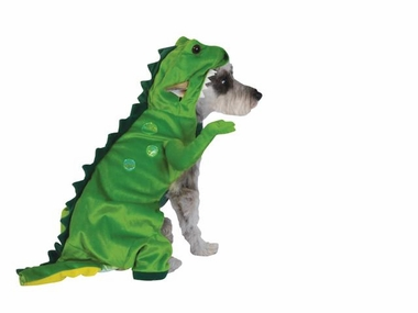 Halloween Dinosaur Costume - LARGE