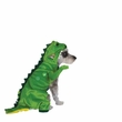 Halloween Dinosaur Costume - MEDIUM