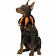 Halloween Jester Collar - LARGE