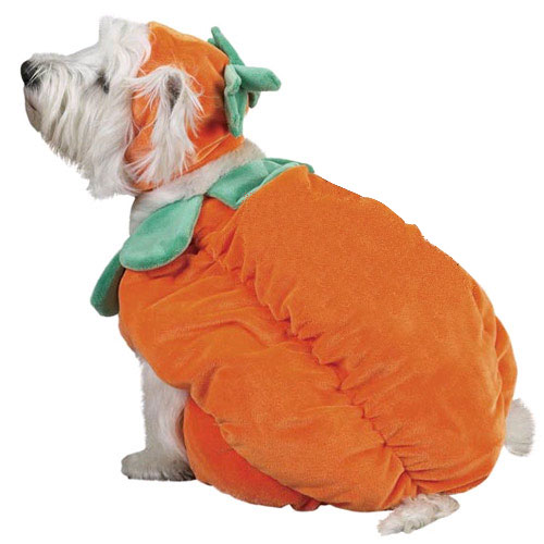 Halloween Pumpkin Costume - MEDIUM