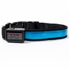 Halo Mini LED Safety Dog Collar Blue - Medium