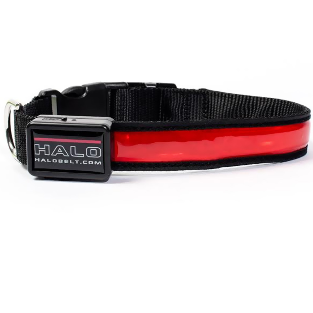 Halo Mini LED Safety Dog Collar Red - Small