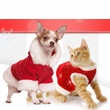 Holiday Pet Fashion Accessories