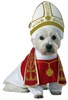 Animal Planet Holy Hound Dog Costume