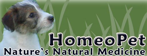 HomeoPet- Nature's Natural Medicine