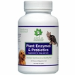 Animal Essentials Plant Enzyme with Probiotics (100 gm)