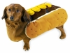 Hot Diggity Dog Costume Mustard - MEDIUM