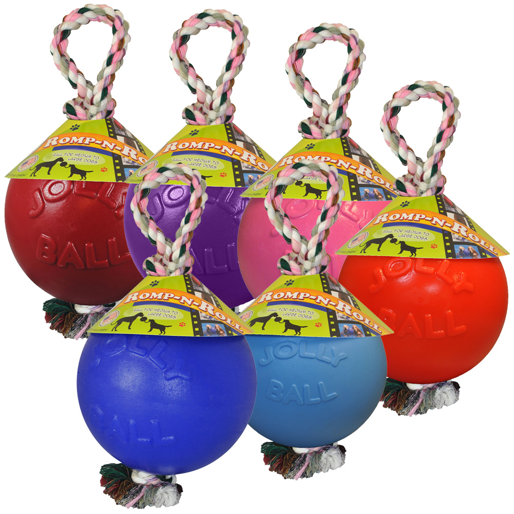 Jolly Pets Romp-n-Roll (8 in.) - Assorted