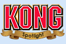 Kong Product Spotlight
